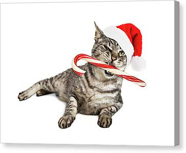 Funny Santa Cat With Candy Cane Canvas Print by Susan Schmitz