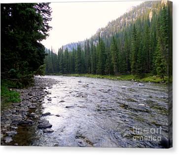 Gallatin River Montana Canvas Print by Kay Novy