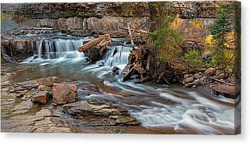 Gallatin River Montana Canvas Print by Loree Johnson
