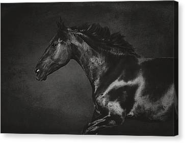 Galloping Horse Artwork 2 Canvas Print by Wolf Shadow  Photography