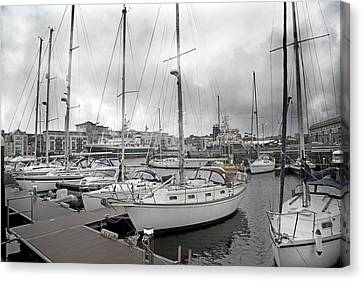 Galway Harbour Canvas Print by Betsy Knapp