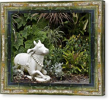 Garden Bull Canvas Print by Bell And Todd