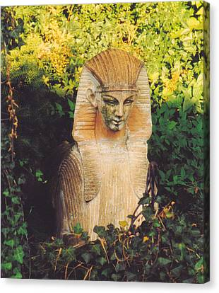Garden Guardian Canvas Print by Jan Amiss Photography