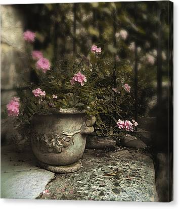 Garden Planter Canvas Print by Jessica Jenney