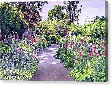 Garden Walk Canvas Print by David Lloyd Glover