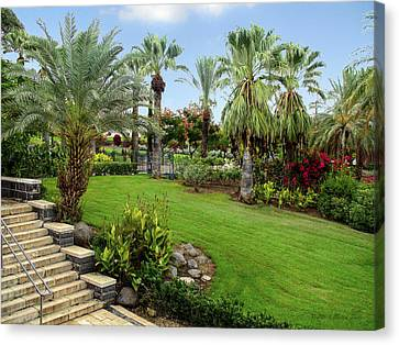 Gardens At Mount Of Beatitudes Israel Canvas Print by Brian Tada