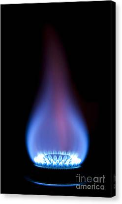 Gas Flame Canvas Print by Andy Smy