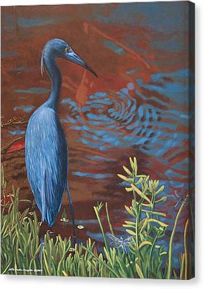 Gazing Intently Canvas Print by Peter Muzyka