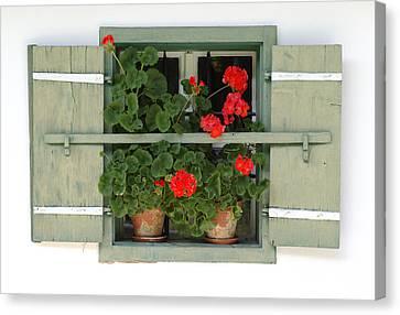 Geranium Window Canvas Print by Frank Tschakert