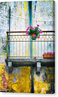 Geraniums On Old Balcony    Canvas Print by Silvia Ganora