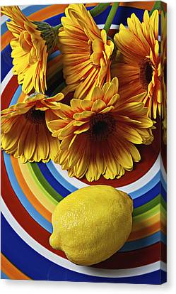 Gerbera Daisy's And Lemon Canvas Print by Garry Gay