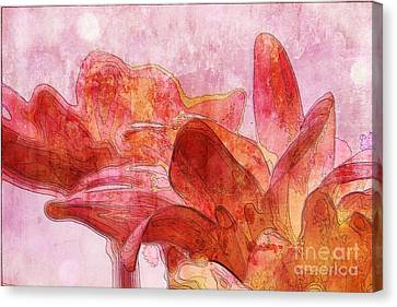 Gerberie - 010dt Canvas Print by Variance Collections