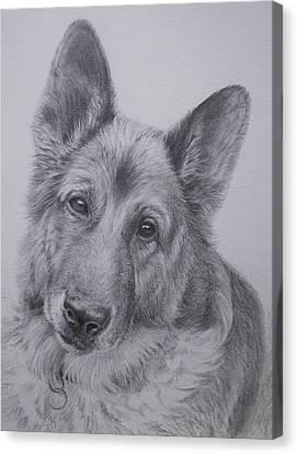 German Shepherd Canvas Print by Keran Sunaski Gilmore