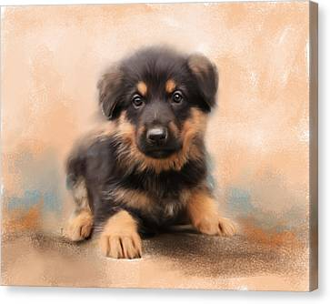 German Shepherd Puppy Portrait Canvas Print by Jai Johnson