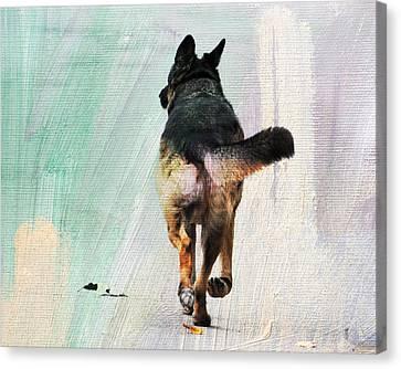 German Shepherd Taking A Walk Canvas Print by Jai Johnson