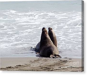 Get Off My Beach Canvas Print by Methune Hively