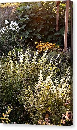 Lost In The Flower Garden Canvas Print by Kim Bemis