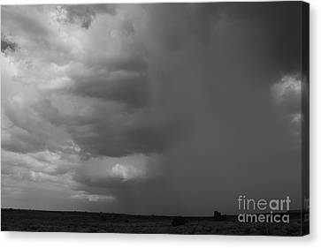 Getting Wet Canvas Print by Adam Smith