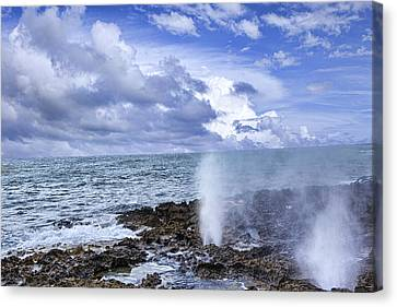 Geysers On The Beach Canvas Print by Wendy White