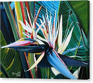 Giant Bird Of Paradise Canvas Print by Marionette Taboniar