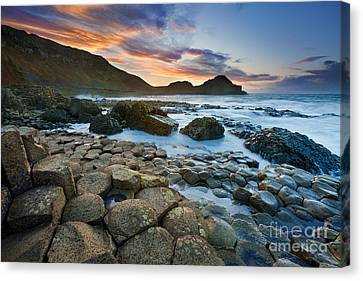 Giant's Causeway 1 Canvas Print by Rod McLean