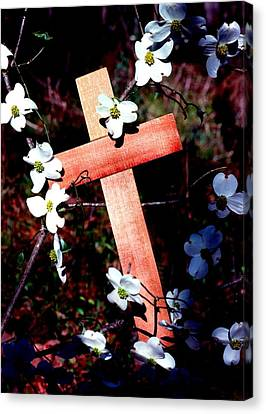 Gift Cross And Dogwood Canvas Print by John Foote