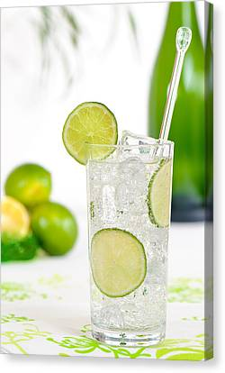 Gin And Tonic Drink Canvas Print by Amanda Elwell
