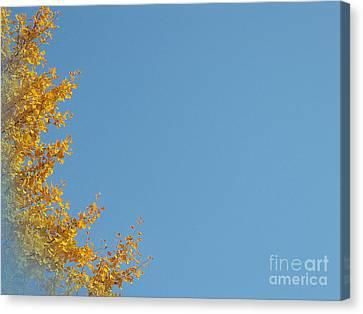 Ginkgo Fantasy In Blue Canvas Print by Eena Bo