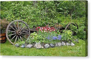 Girdwood Garden Alaska Canvas Print by Diane E Berry