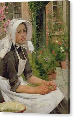Girl Shelling Peas Canvas Print by Albert Chevallier Tayler