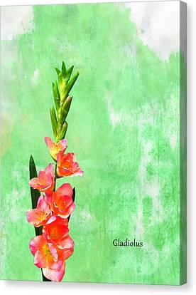 Gladiolus Canvas Print by Mark Rogan