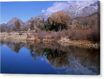 Glassy And Classy Canvas Print by Soli Deo Gloria Wilderness And Wildlife Photography