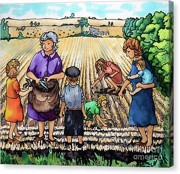 Gleaning At Fordy Canvas Print by Paula Chapman