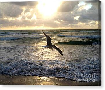 Gliding Canvas Print by Raymel Garcia