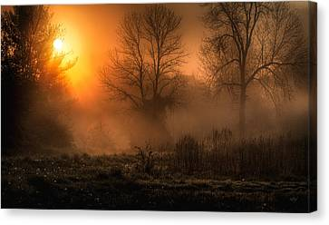 Glowing Sunrise Canvas Print by Everet Regal