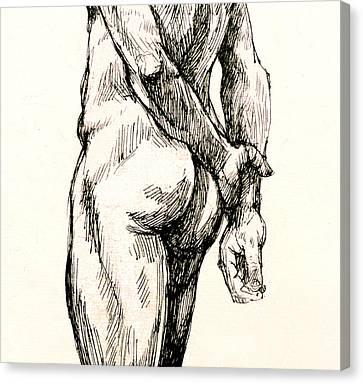 Gluteus Maximus Canvas Print by Roz McQuillan