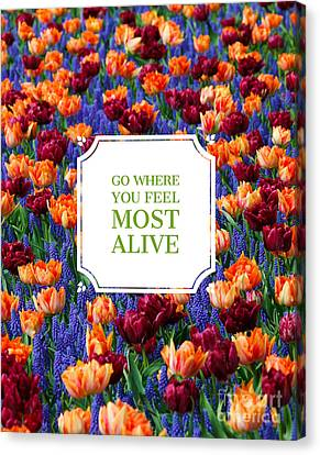 Go Where You Feel Most Alive Poster Canvas Print by Edward Fielding