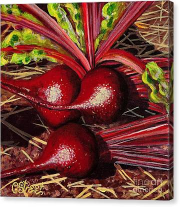 God's Kitchen Series No 2 Beetroot Canvas Print by Caroline Street