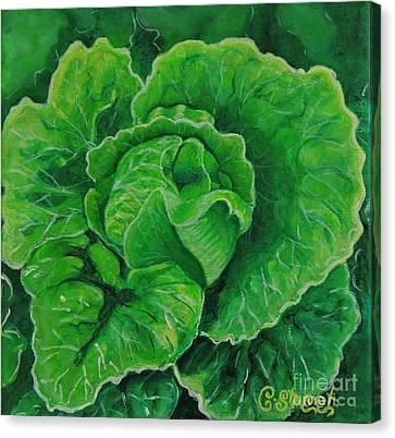 God's Kitchen Series No 5 Lettuce Canvas Print by Caroline Street