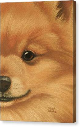 Goggie Pomeranian Canvas Print by Karen Coombes