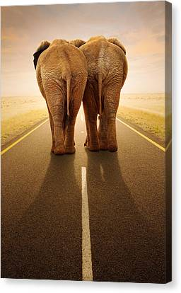 Going Away Together / Travelling By Road Canvas Print by Johan Swanepoel