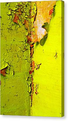 Going Green Canvas Print by Skip Hunt