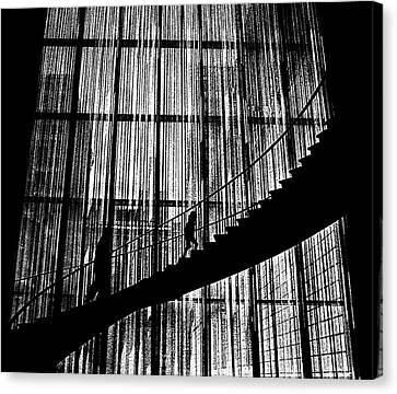 Going Up Canvas Print by Dennis Sullivan