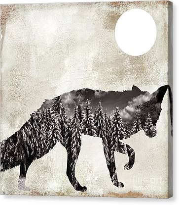 Going Wild Fox Canvas Print by Mindy Sommers