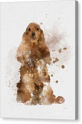 Golden Cocker Spaniel Canvas Print by Rebecca Jenkins