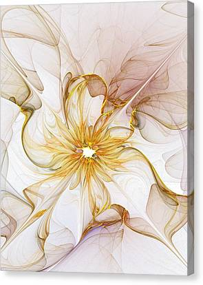Golden Glow Canvas Print by Amanda Moore