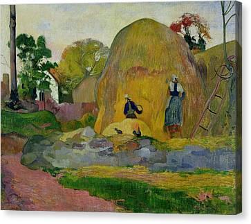 Golden Harvest Canvas Print by Paul Gauguin