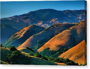 Golden Hills Canvas Print by Steven Ainsworth