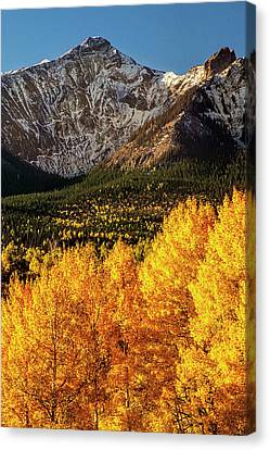 Golden Mountain Scene Canvas Print by Andrew Soundarajan