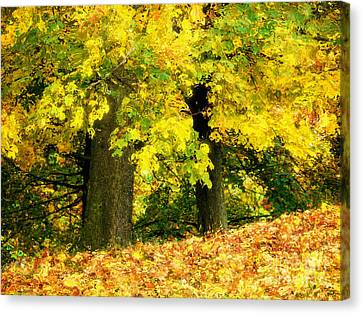 Golden October Canvas Print by Angela Doelling AD DESIGN Photo and PhotoArt